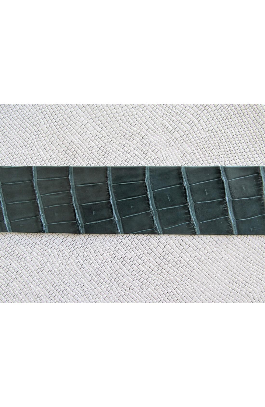 art. 12 COCCODRILLO VERO pancia alligatore louisiana var.65 verde marino