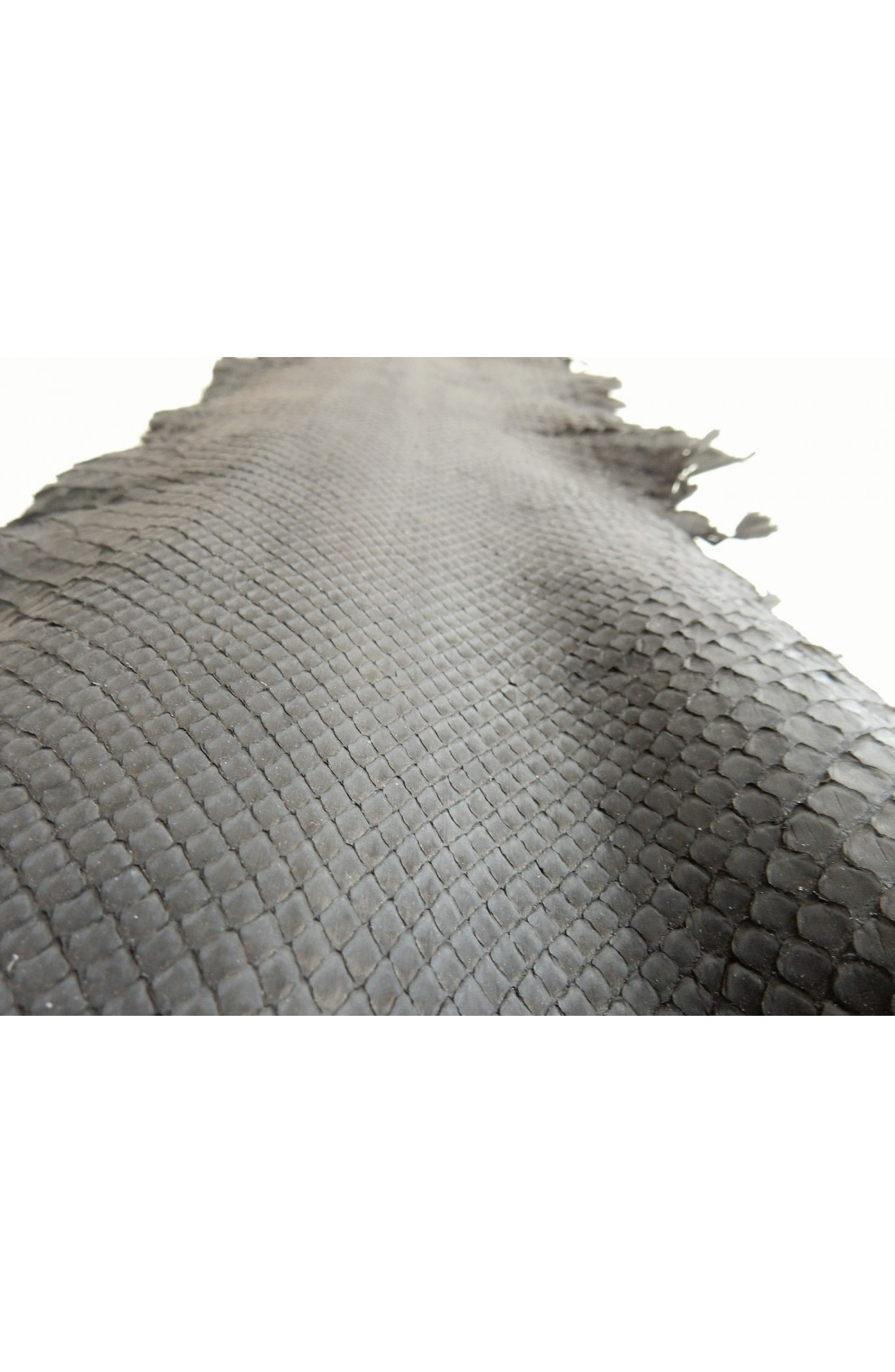 art. 22 PITONE VERO opaco decolorato smerigliato var.12 grigio polvere (2)