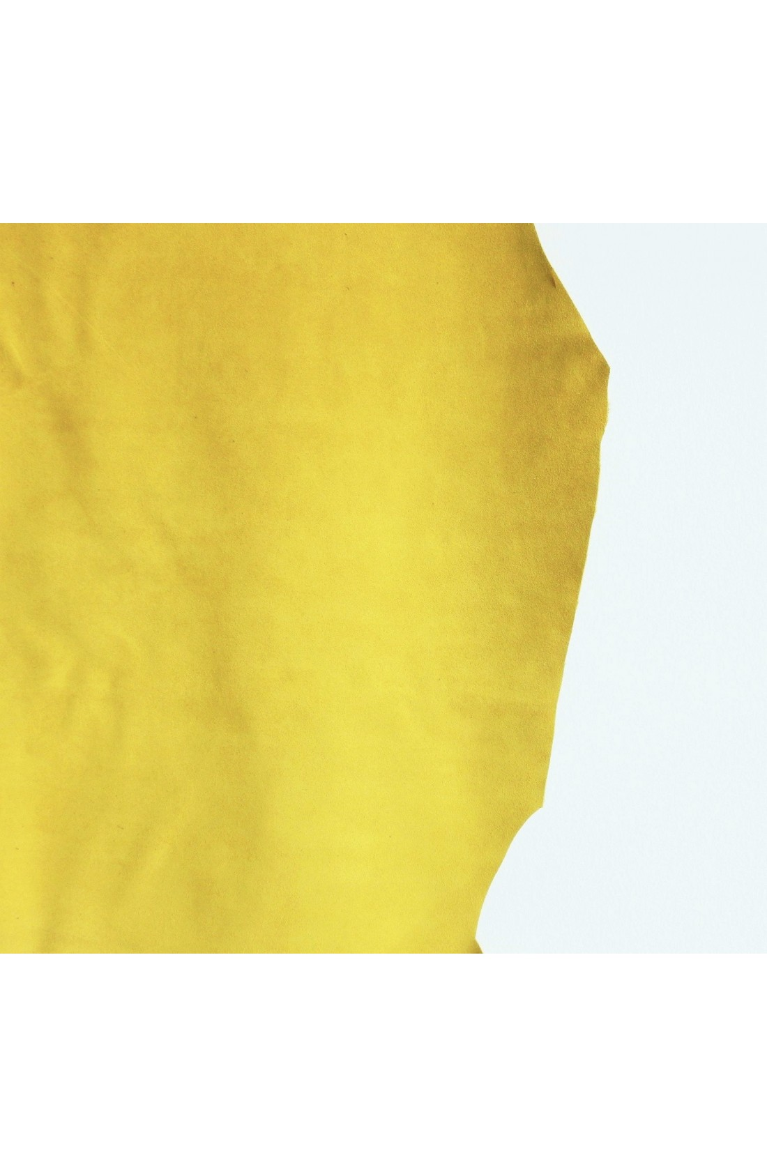 art. 60 SCAMOSCIATO var.66 giallo (2)